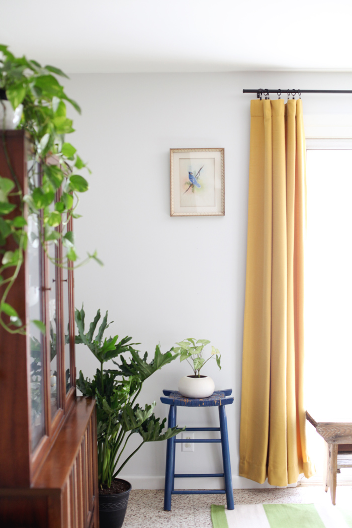dining room with houseplants and yellow curtains